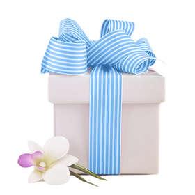 Dovanos, dovanų kuponai (23 akcijos!)