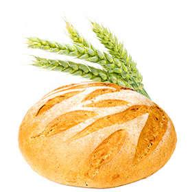 Duona ir konditerija (60 akcijų!)